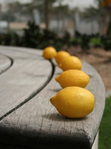 Lemons, beautiful lemons.